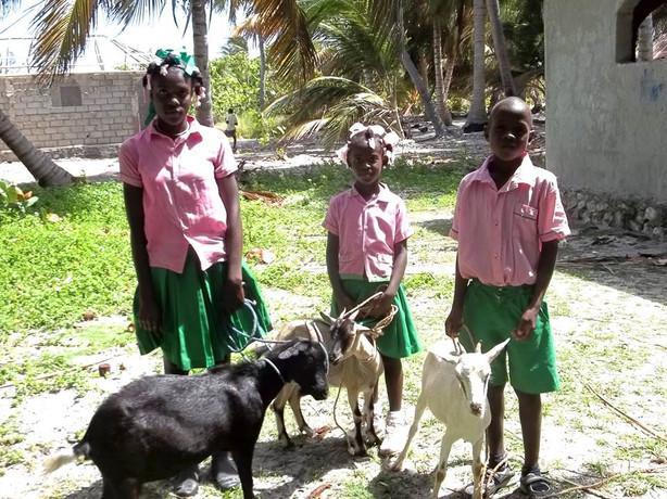 Goat Reward Program.jpg