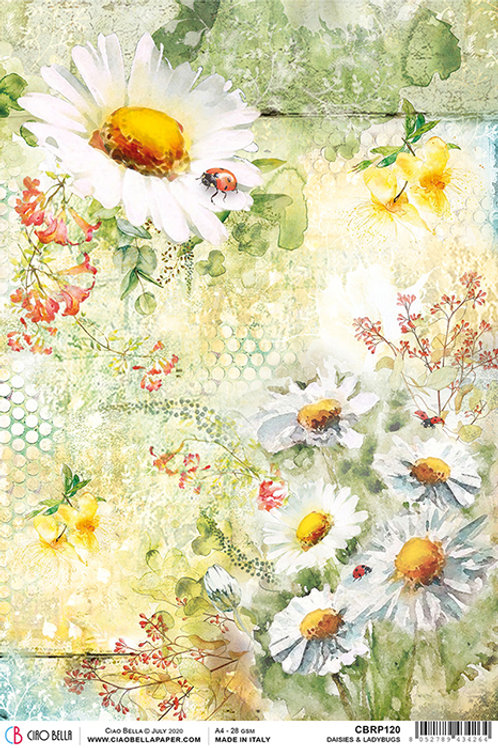 Ciao Bella A4 Rice Paper - Daisies & Ladybugs, CBRP120