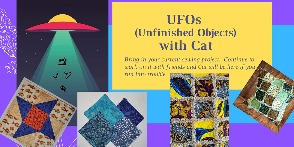 UFO with Cat