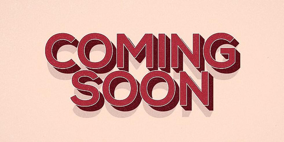 Coming Soon - Janet Skates Acrylic Artist