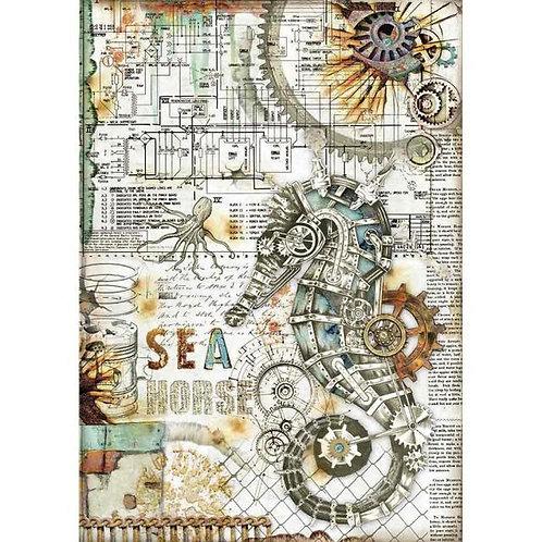 Stamperia A4 Rice Paper - Sea World - Seahorse, DFSA4431