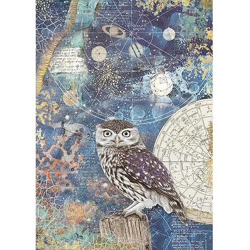 Stamperia - A4 Rice Paper - Cosmos - Owl, DFSA4389