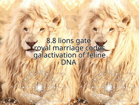 Ascension report: 8:8 lions gate royal marriage codes & feline DNA activation