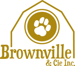 Brownvilleetcieinc_logo_Gold - Copie.png
