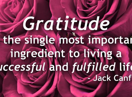 Lesson #4: Develop an Attitude of Gratitude
