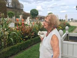 Les fleurs du Parc de Saint-Cloud