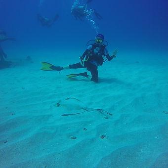 underwater-navigator