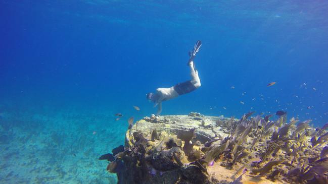 honduras-snorkeling