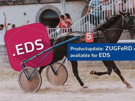 ZUGFeRD & XRechnung now available for EDS