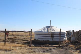 [몽골]석탄 한 자루로 영하 40도 겨울나기