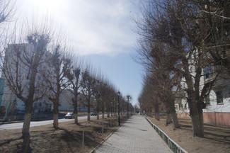 [몽골꿈나무센터] 몽골은 지금 추운 겨울을 맞이 할 준비중이에요! 추위 속에서도 센터에 잘 나와 함께하는 아이들 소식 전해드릴께요 ~