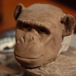 Chimp clay sketch 2016