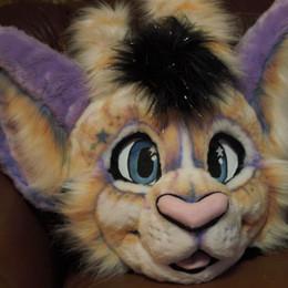 Cosmos Cat mask