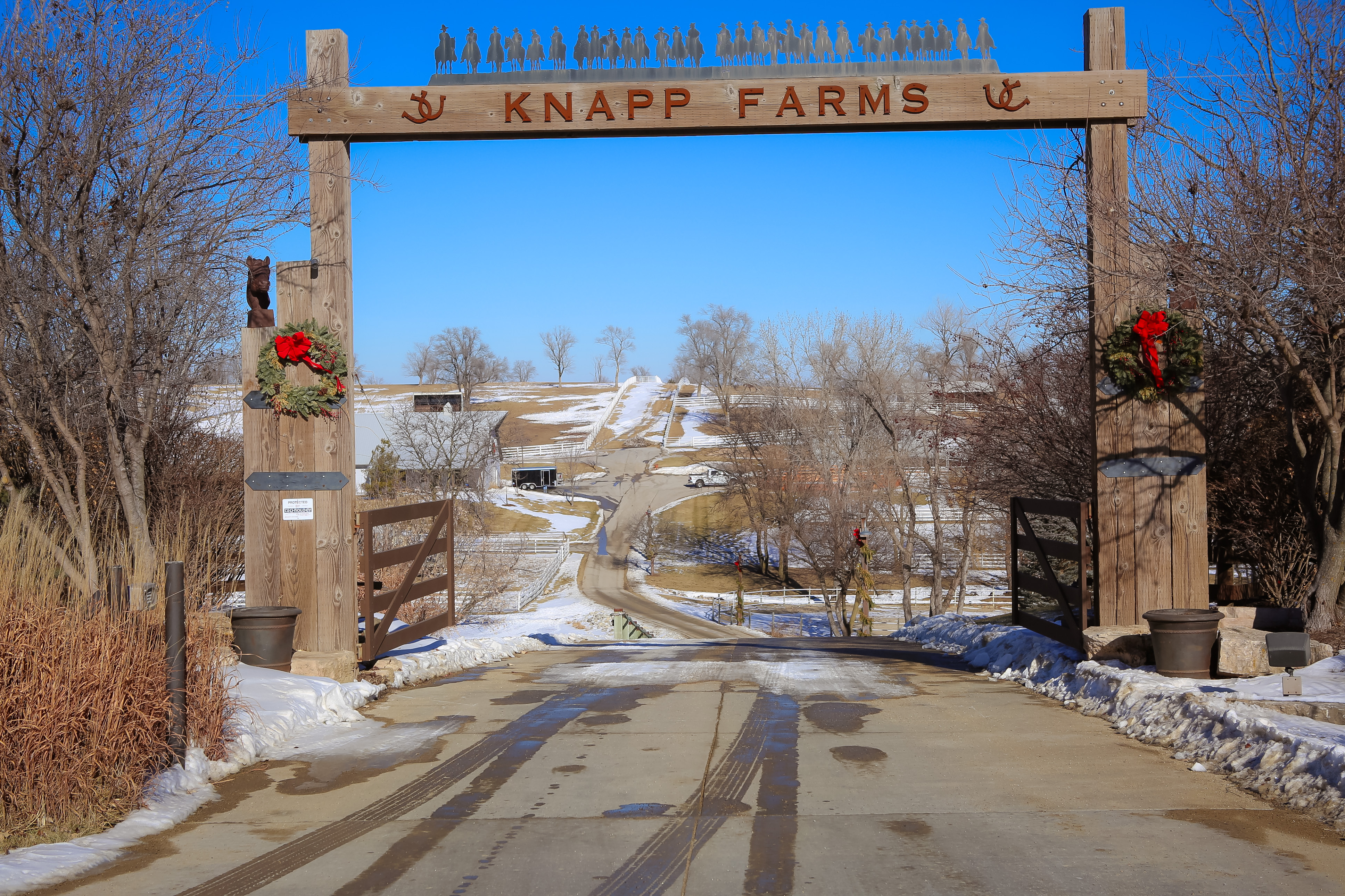 The farm's holiday entry gate.