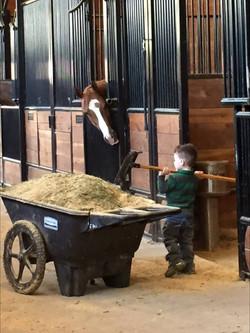 Hudson cleaning stalls