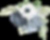 AdobeStock_232927128 (1).png