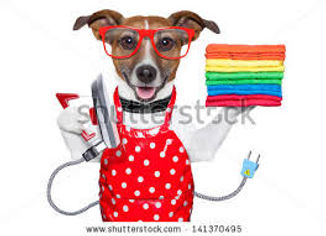 Red Apron with dog.jpg