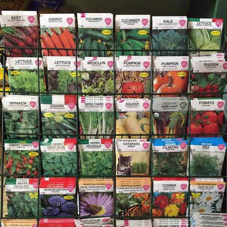 Seasonal Seed
