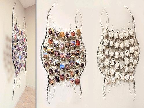 """Endangered"" by Bonnie Kuhr"