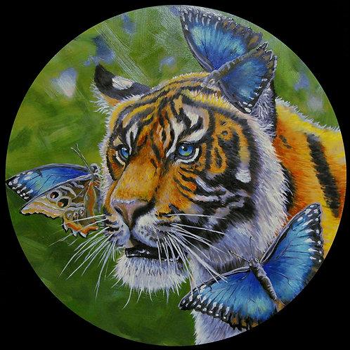 """""""Morpho Tigris"""" by Noah Hartley"""