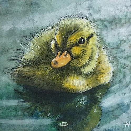 """Wittle Ducky"" by Noah Hartley"