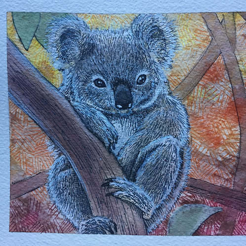 """Koala"" by Noah Hartley"