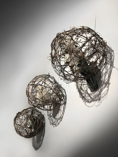 """""""Caged"""" by Trish Gianakis"""