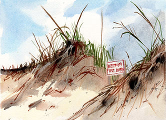 Keep Off the Dunes