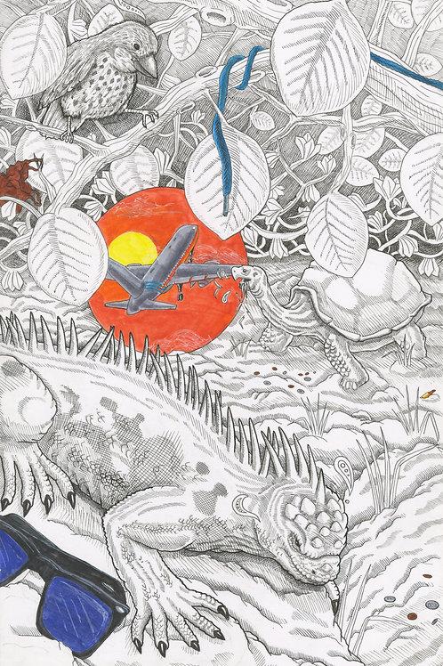 """""""Galapagos"""" by Noah Hartley"""