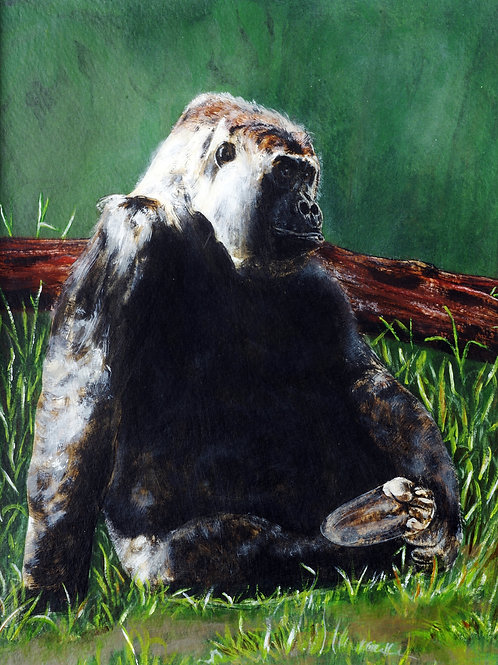 """Gorilla"" by Monica Carrell"