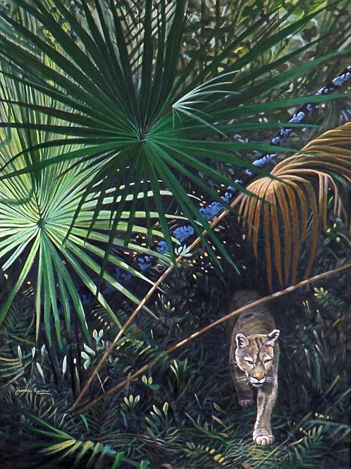 """""""Out of the Shadows - Florida Panther"""" by James Kiesow"""
