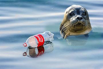 Have A Coke?