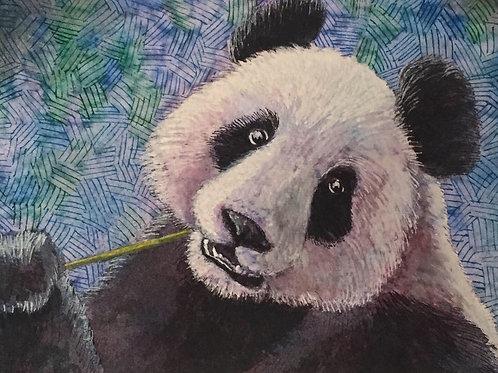 """Hungry Panda"" by Noah Hartley"