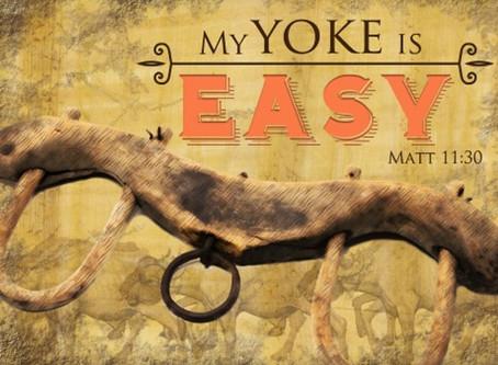 My Yoke Is Easy.