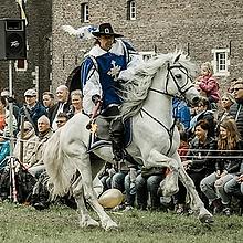 Musketier te paard