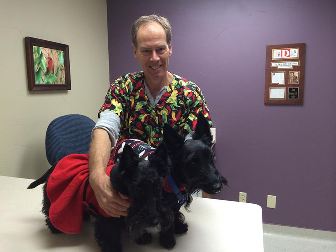 Adrenal Disease in Scotties