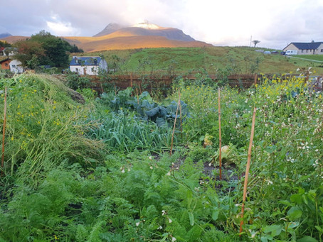 Local people creating the food system they want in the Scottish Highlands