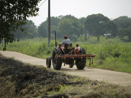 Connecting Sri Lanka's Smallholder Farmers and Consumers: The Role of Local Markets