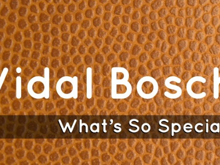 All That You Need to Know About Vidal Bosch Leather Belts!