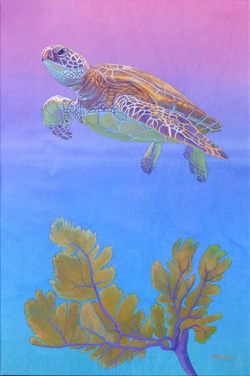 Sea Turtle at Sunrise