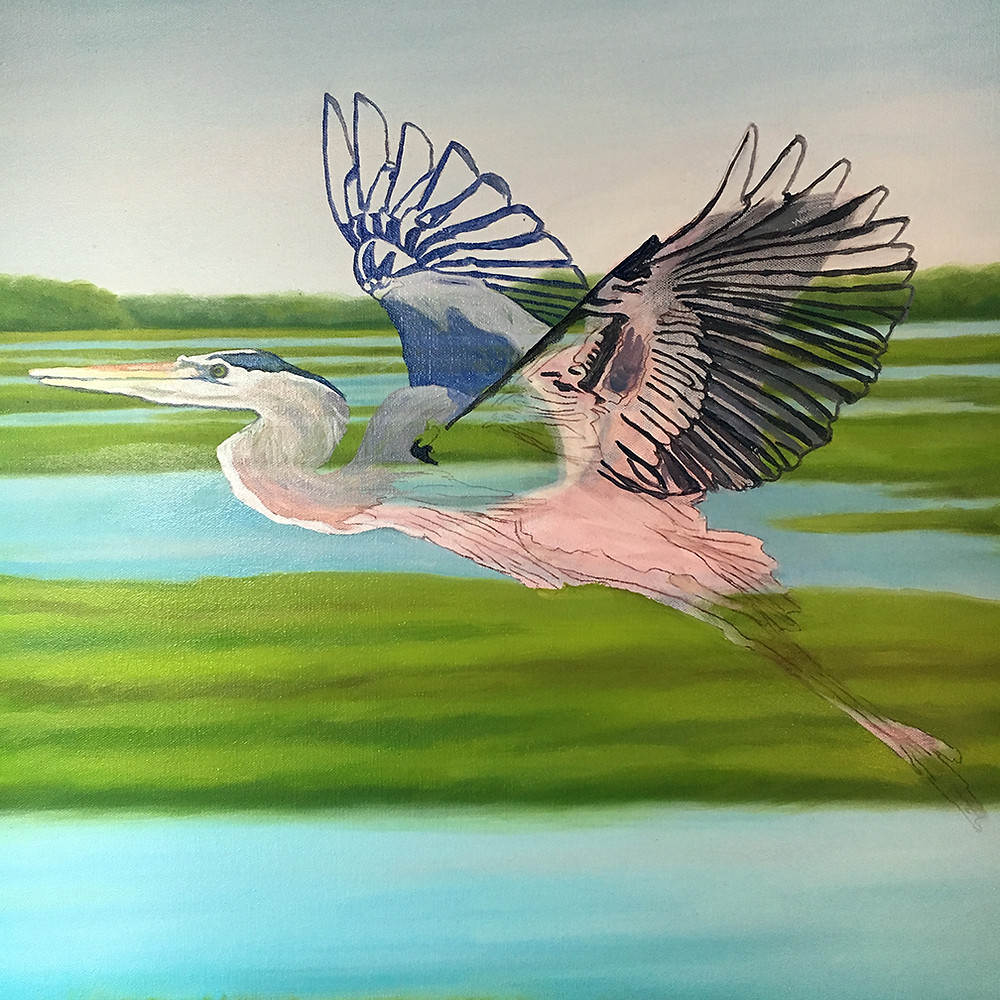 The Blue Heron begins to appear.