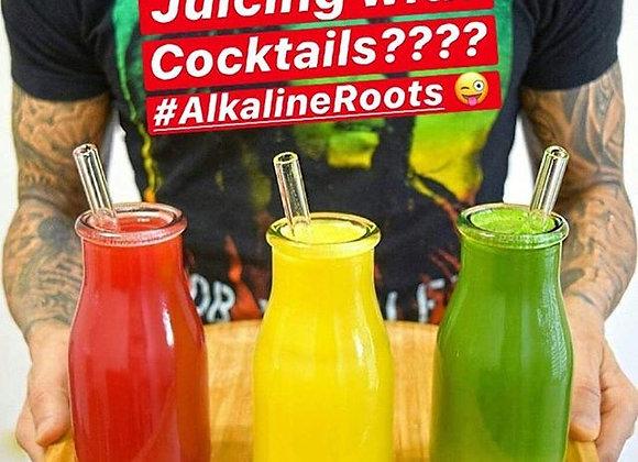 Alkaline Roots 30 day Juice Plan