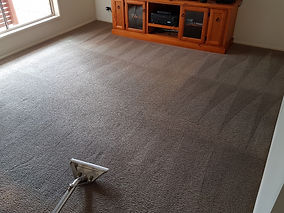 Rezised Lounge Carpet.jpg