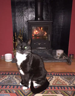 Finn-fireplace
