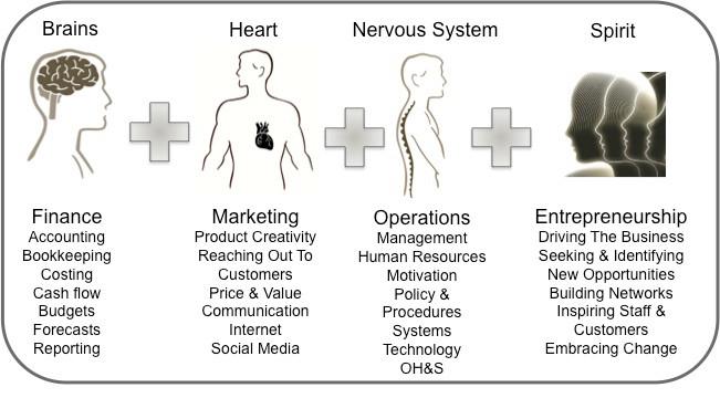 Business Brains Heart Nervous System Spirit.jpg
