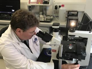 Level 1 - In-situ Microscopy