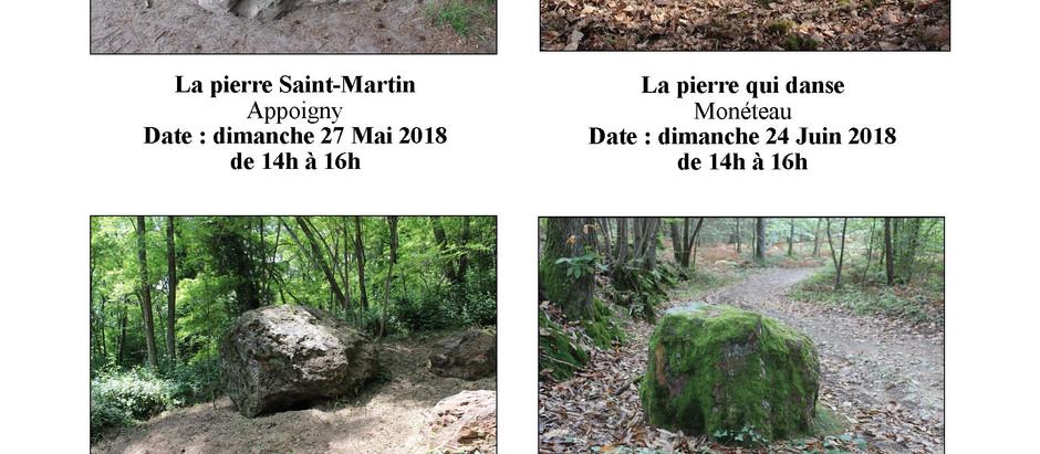 Découverte des pierres insolites de l'Yonne