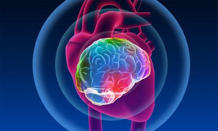 O Eletromagnetismo do Coração: Cientistas apontam que o coração pensa e irradia