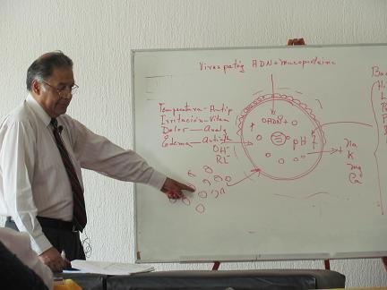 Dr Goiz 07