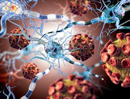 Bio-Magnetismo: Tumores e Associações